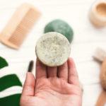 4 recettes insolites à réaliser avec des glands de Chêne