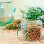 Grippe, rhume, bronchite, covid : Quelles plantes médicinales utiliser contre les maux de l'hiver ?