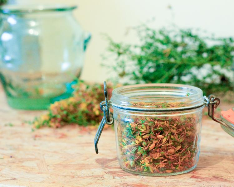 tisane millepertuis remède naturel bienfait propriété utilisation dépression brûlures douleurs musculaires baume macérât