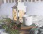 remèdes naturels infections hivernales plantes médicinales hiver grippe rhume bronchite angine coup de froid phytothérapie aromathérapie huiles essentielles synergie